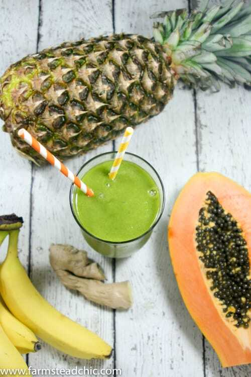 This Pineapple Papaya Green Smoothie is a true tropical treat. The pineapple and papaya make it sweet and luscious while the ginger keeps things exciting.