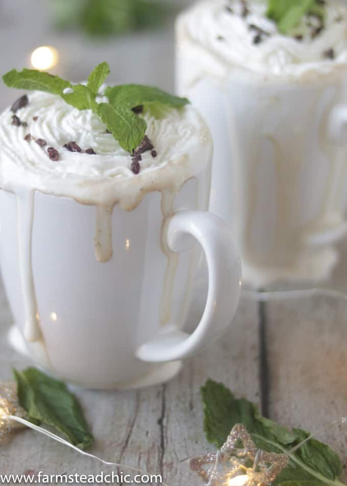 This Paleo and Whole30 Peppermint Mocha Latte is Christmas in a cup. You only need four ingredients for this healthy, vegan, dairy-free holiday treat.