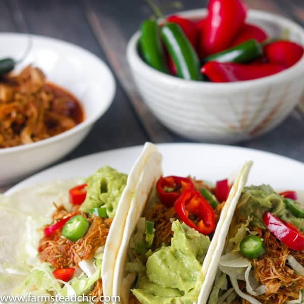 This Paleo and Whole30 Instant Pot Taco Chicken is packed full of flavor with fresh red Anaheim and Serrano peppers along with chili powder and chipotle powder. Coriander, cumin and garlic and onion bring everything into balance and pack a nutritional punch as well. Low carb, Keto-friendly, gluten free, grain free, dairy free.