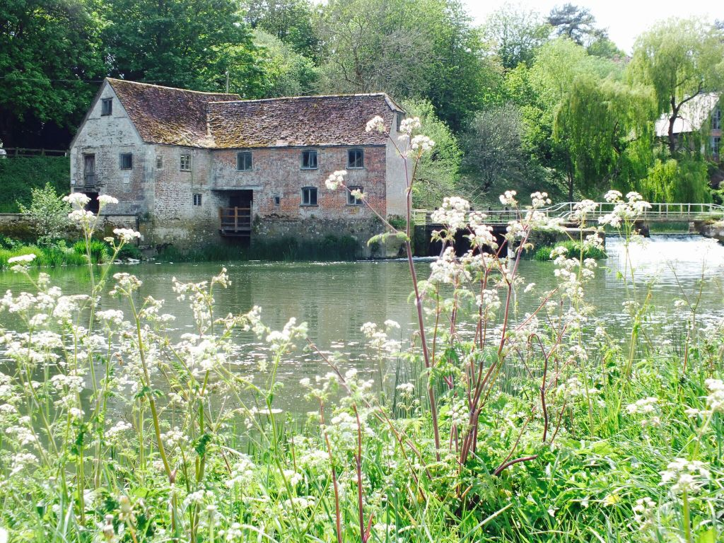 Sturminster Newton Mill in the Summer a short walk from Farmstead Glamping
