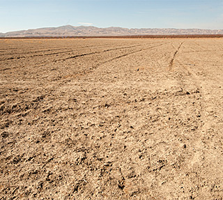 UPDATE 5/19/14: UC economic report reveals significant impacts caused by drought