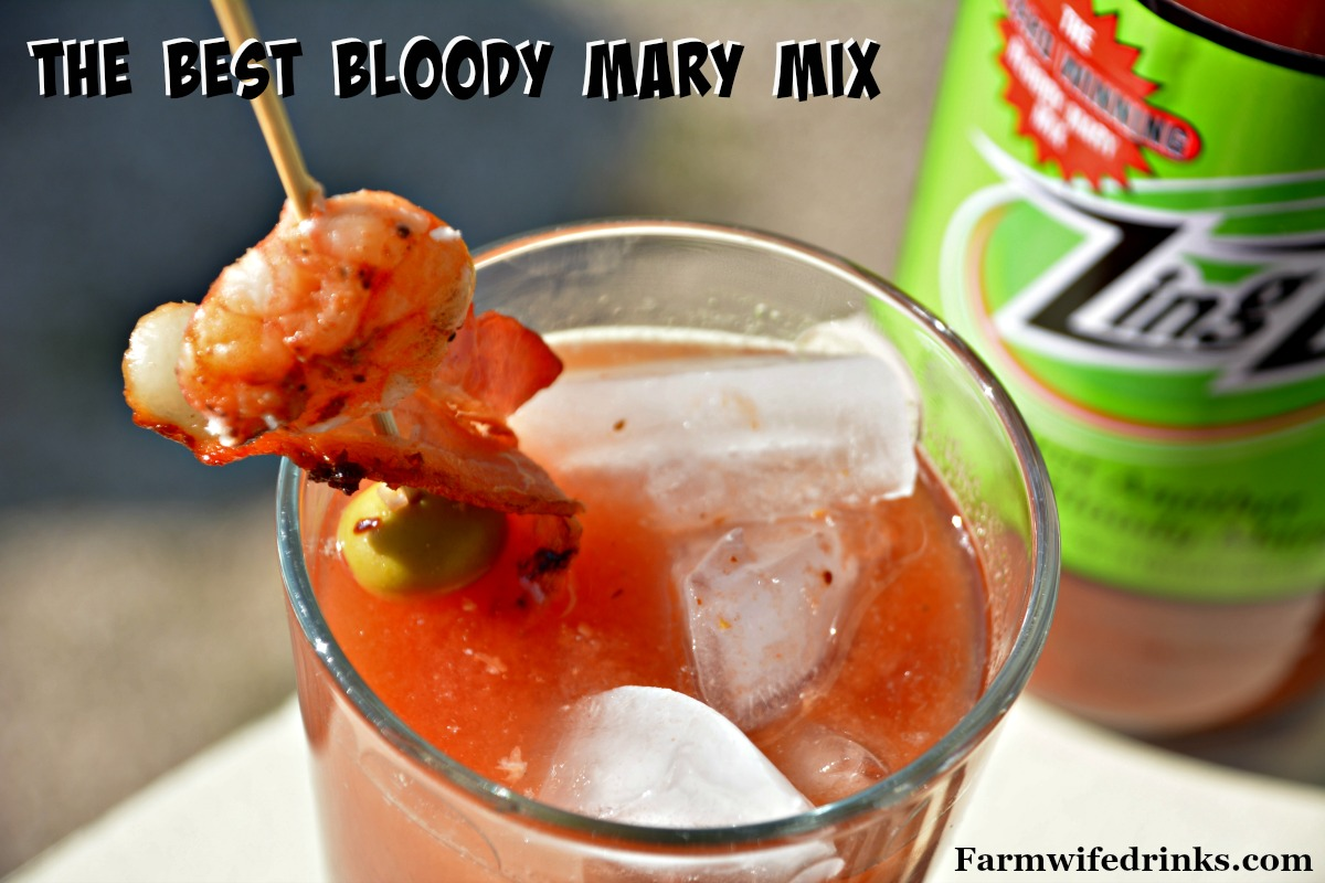 Want to make the best Bloody Mary? No fear, just use a mix. Find out what the best Bloody Mary mix is and save yourself the money in making your own mix.