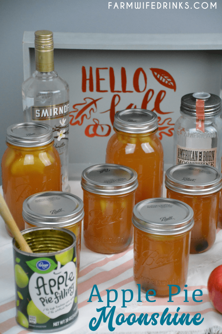 Apple pie moonshine combines apple cider and juice with apple pie filling with cinnamon sticks and vanilla with moonshine and vanilla vodka to create your new favorite fall liquor to drink.