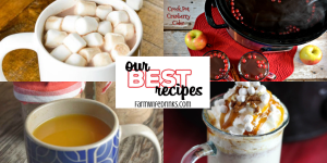 Our Best Hot Drinks Recipes include hot chocolates, white hot chocolates, friendship tea, hot cider and even how to make your own vanilla simple syrup at home for your coffee. #Recipes #OurBestRecipes #HotDrinks #CrockPot #HotCocoa #HotCider #HotChocolate #Tea