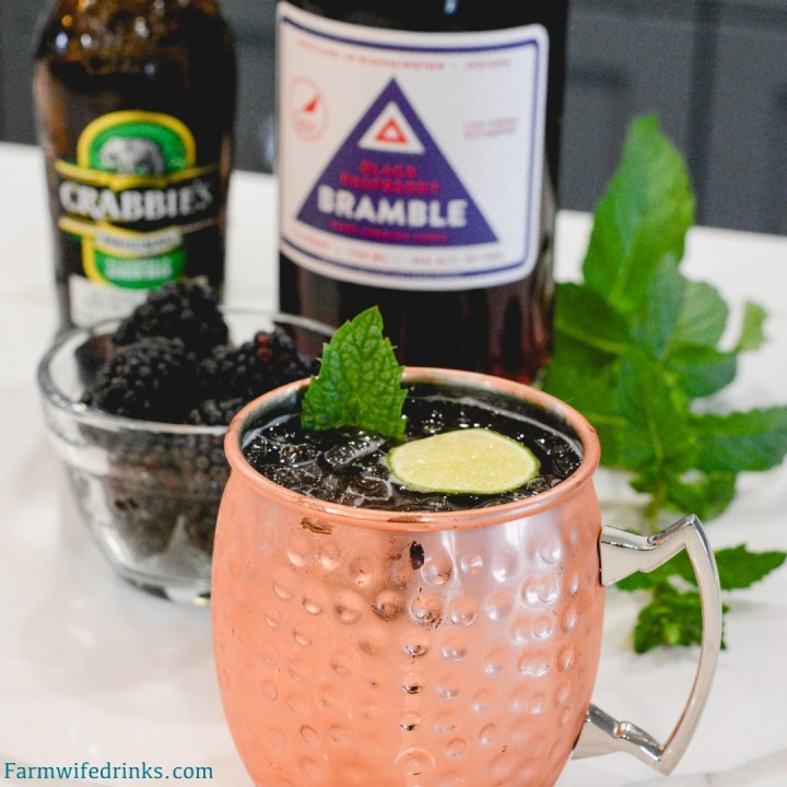 Blackberry Moscow Mules are just what summer order with the combination of blackberry-infused vodka with ginger beer and lime juice, topped with mint and fresh blackberries to make one of my favorite Moscow Mule recipes.