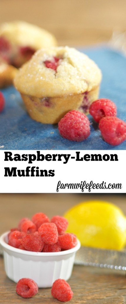 Raspberry-Lemon Muffins-light, easy and a perfect snack