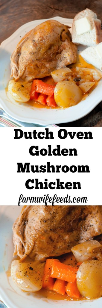Dutch Oven Golden Mushroom Chicken, an easy delicious one pot meal.