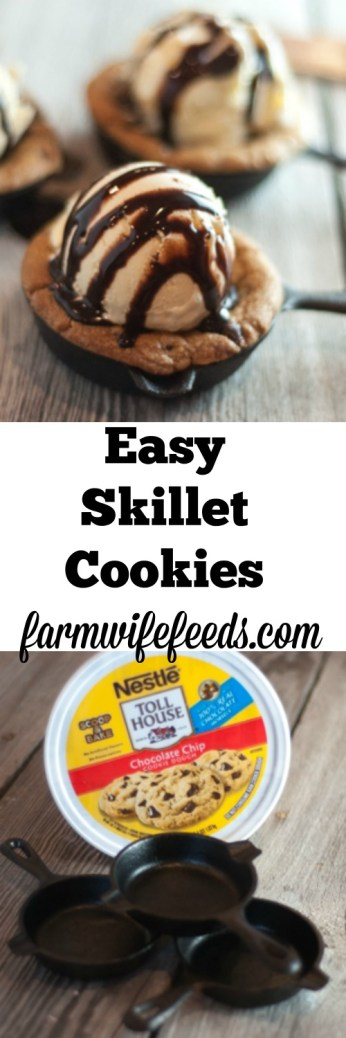 Individual Chocolate Chip Cast Iron Skillet Cookies are all the rage when you go out but are so easy to make at home, make your own at home any time you want and impress everyone!