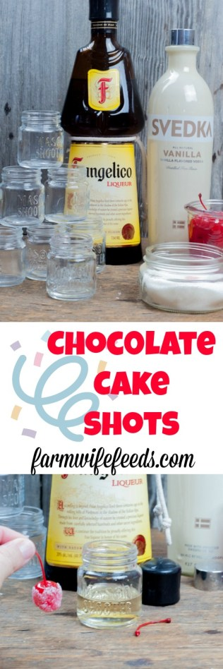 Chocolate Cakes Shots from Farmwife Feeds is a sweet cake party in your mouth! #shots #chocolatecake #birthday #fun