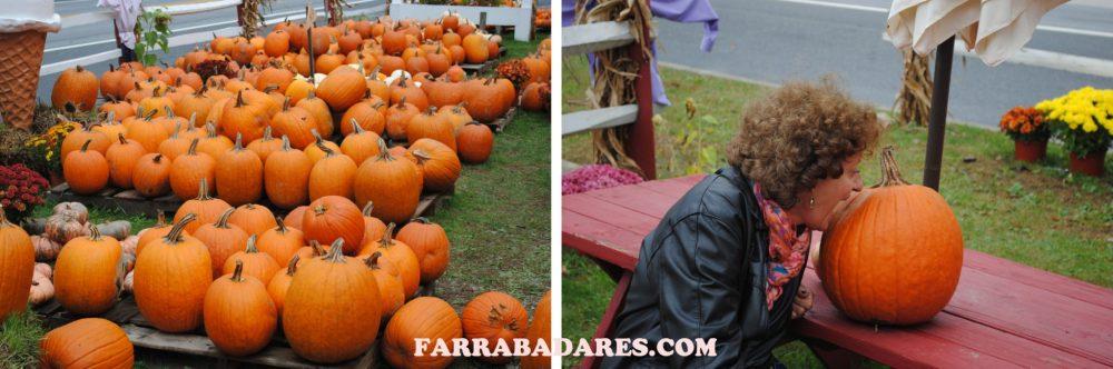 Outono também é a época do Halloween e das abóboras