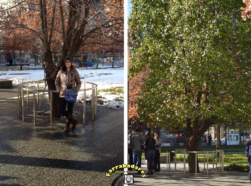 Nova York - Praça do Memorial do 11/09 e a árvore sobrevivente