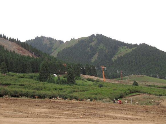 Xinjiang's Nanshan grasslands being bulldozed for a new golf course