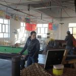 Lobby of the Tashkorgan K2 Youth Hostel in Xinjiang