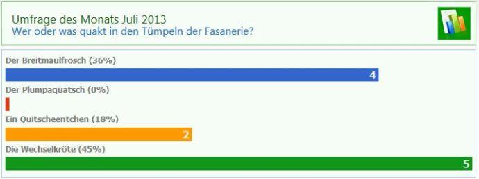 Umfrage Juli 2013
