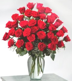 roses-red-big2
