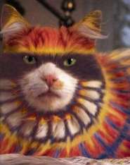 painting-your-cat-colourful-fed-up-looking-felines