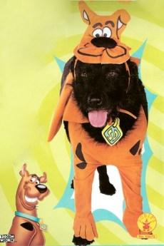 fantasia cachorro scooby doo