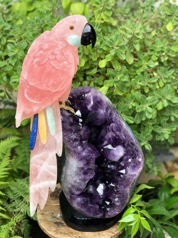 Birds in Stones é uma das empresas brasileiras na GJX Tucson 2020