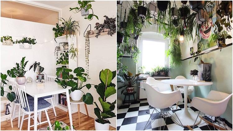 duas fotos de salas de jantar decoradas com selva urbana