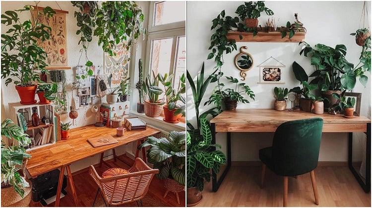 dois escritórios decorados com selva urbana