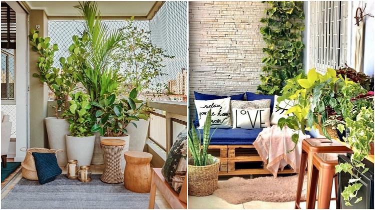duas varandas com vasos de plantas