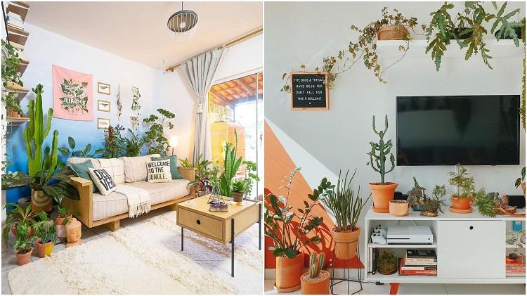 salas com paredes coloridas e selva urbana
