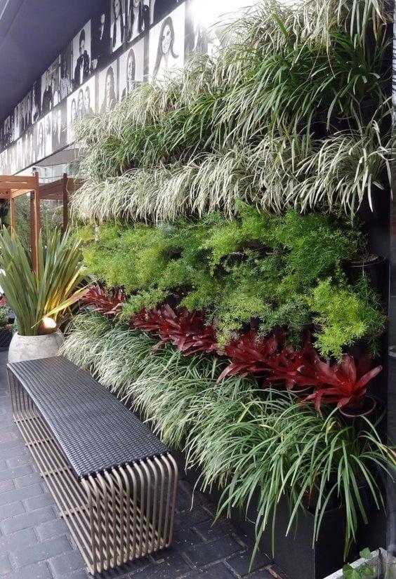 Faixa com plantas diferentes