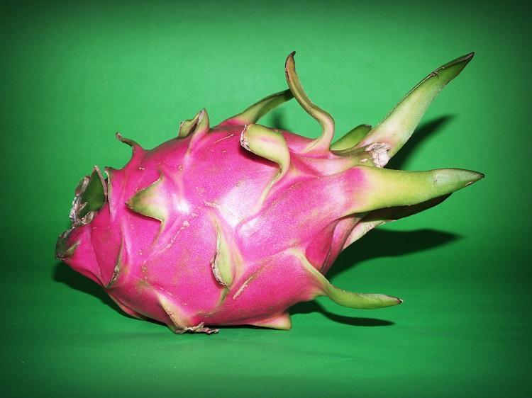 fruta do dragão de casca rosa em fundo verde