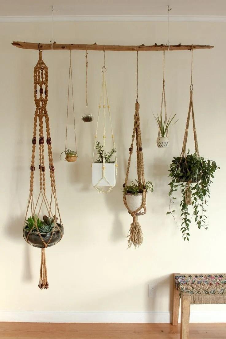 Varal de plantas