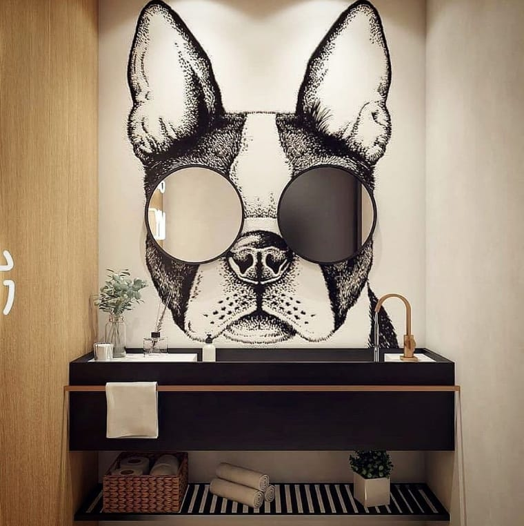 Cachorro com espelhos