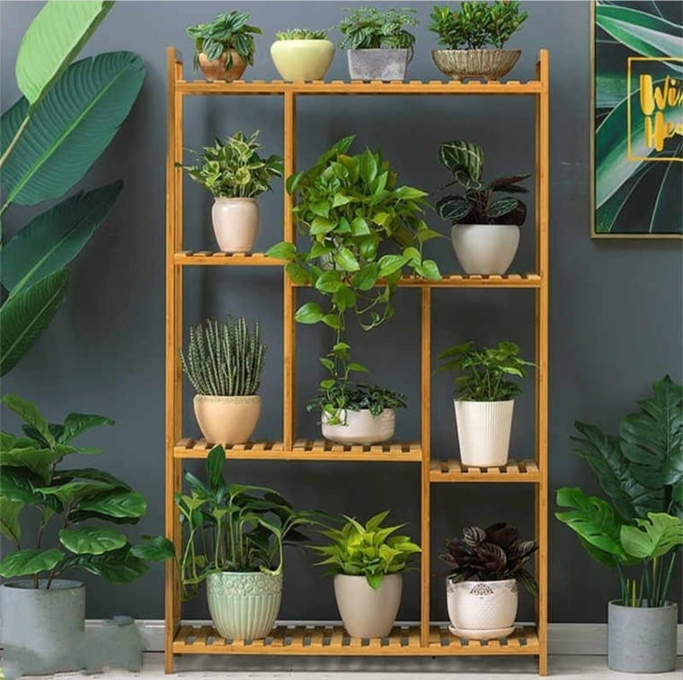 Prateleira de pallet com plantas