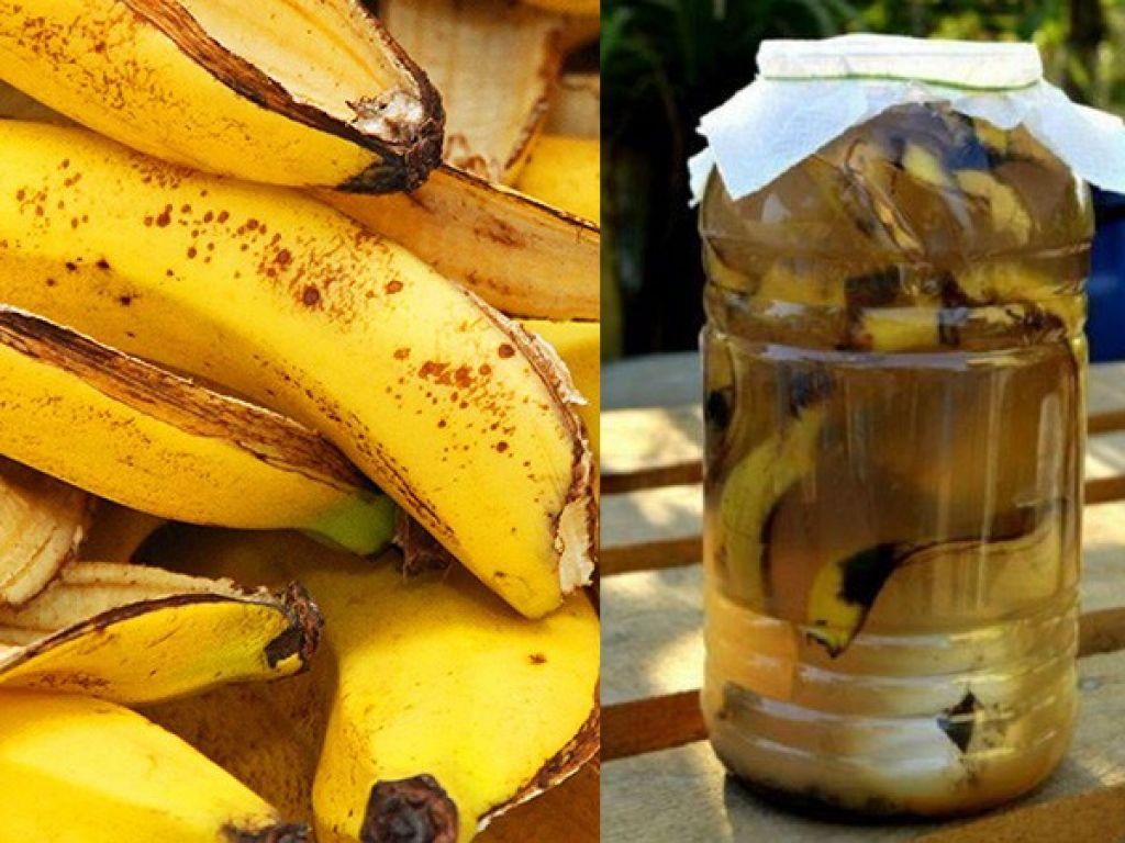 vinagre de banana da terra