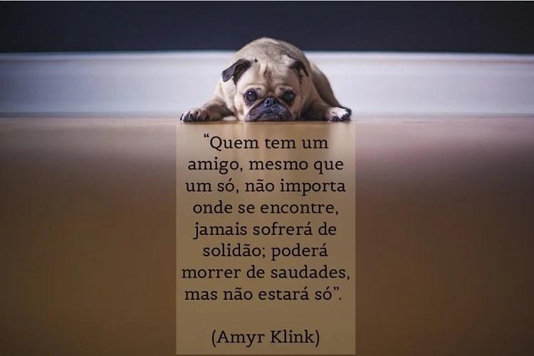 citação sobre saudade de Amyr Klink