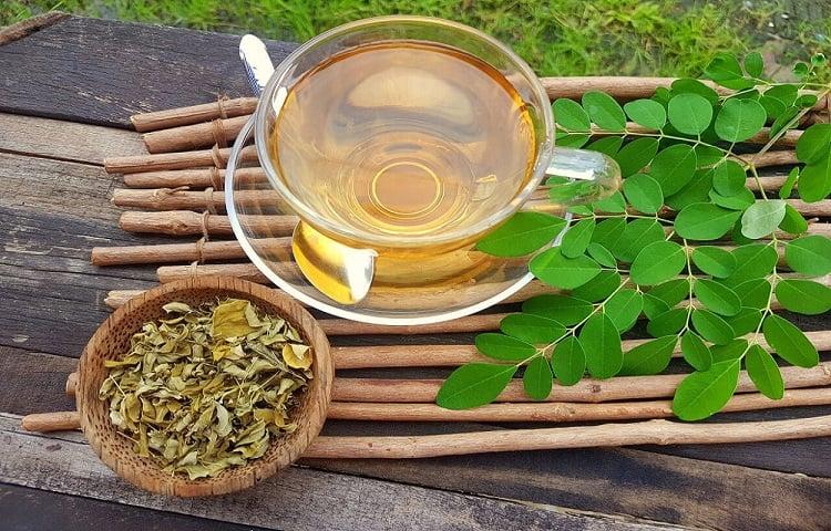 chá de moringa em xícara de vidro ao lado da folha fresca e seca