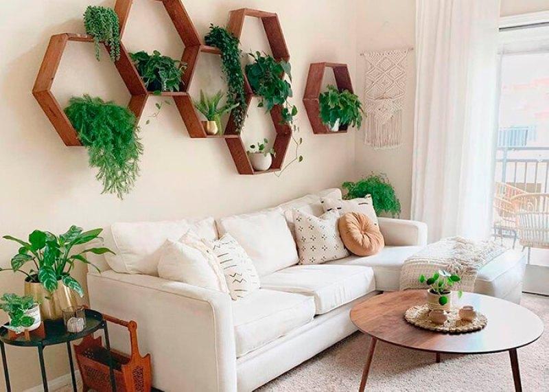 Sala com plantas para diminuir o calor.