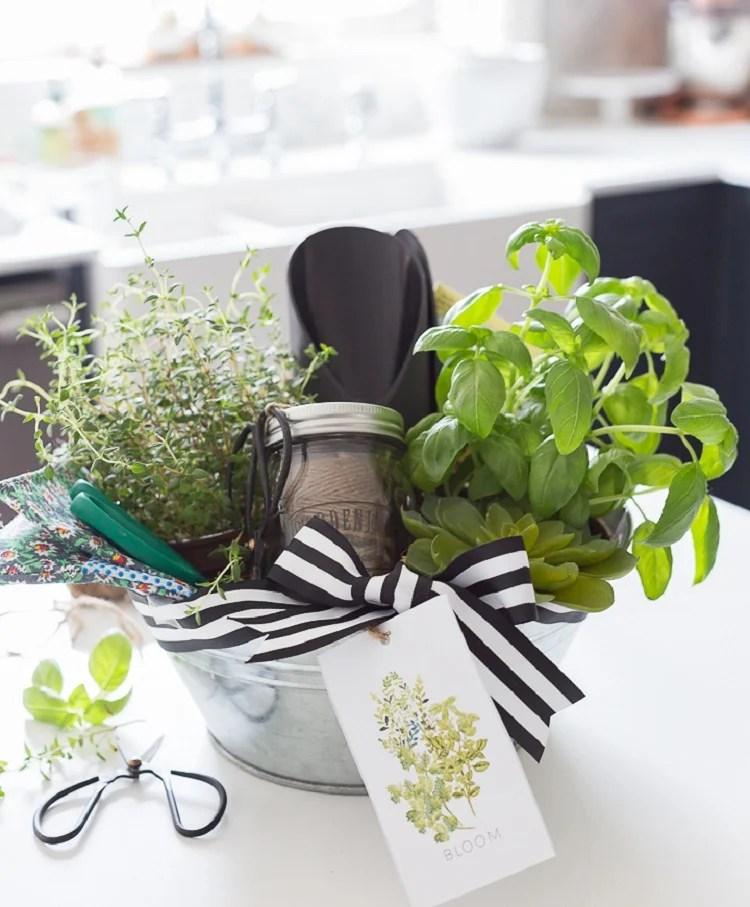 cesta para dia das mães jardinagem