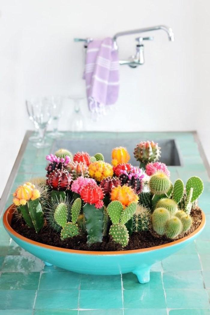 Vaso de planta colorido na cozinha.