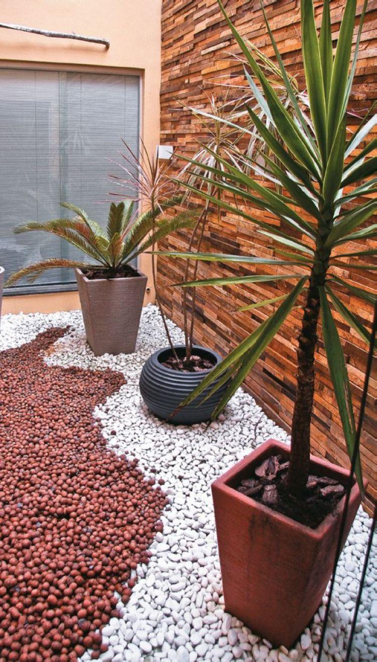 Três vasos de plantas.