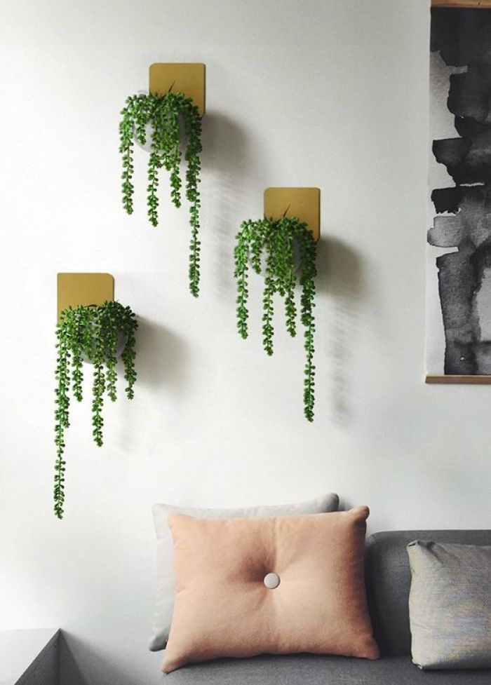 Três plantas pendentes em madeira na sala.