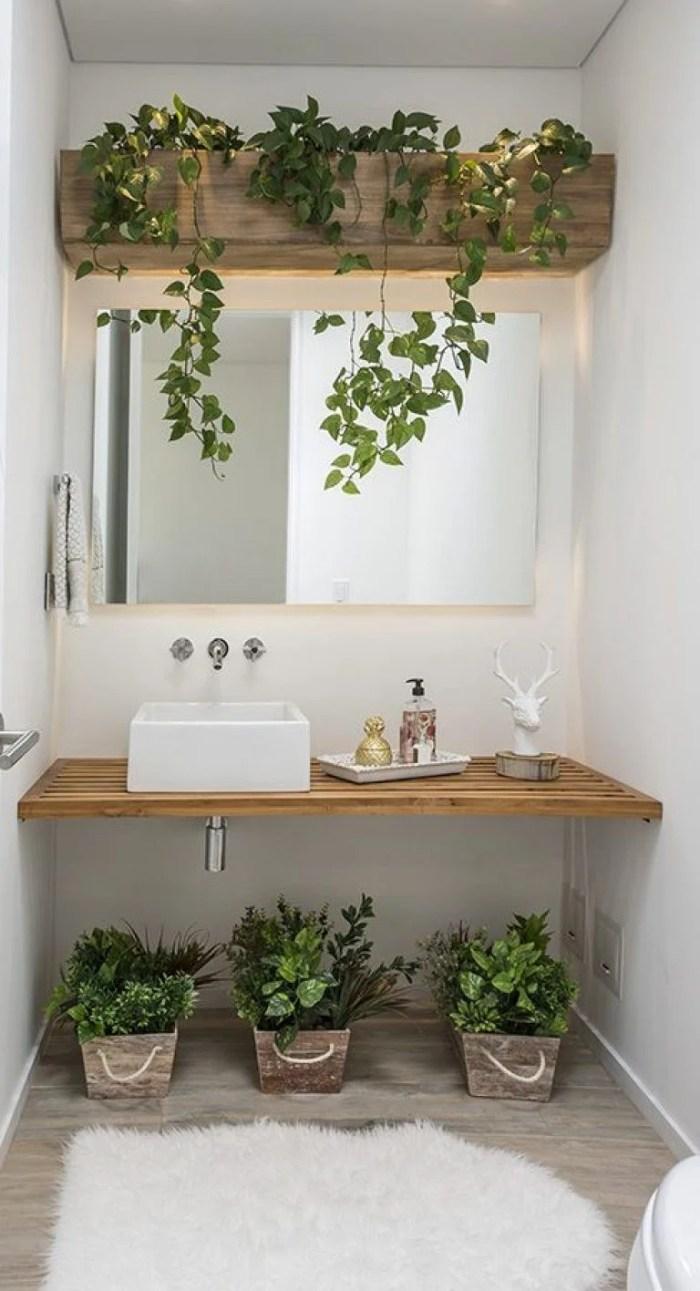 Vasos e plantas de madeira no lavabo.