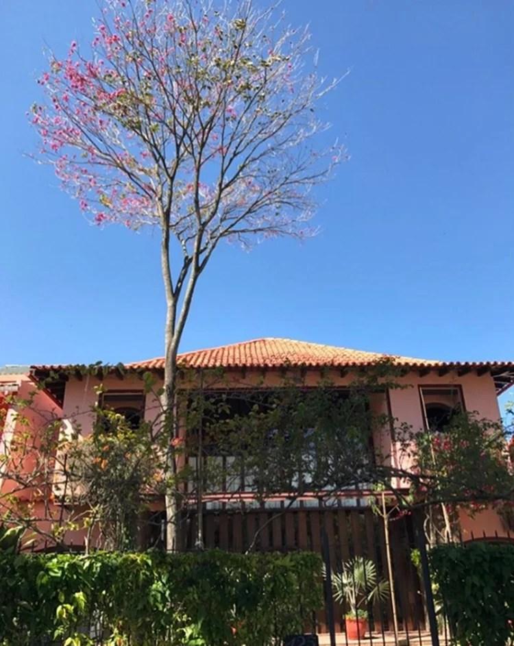 Foto de uma das casas do ator.