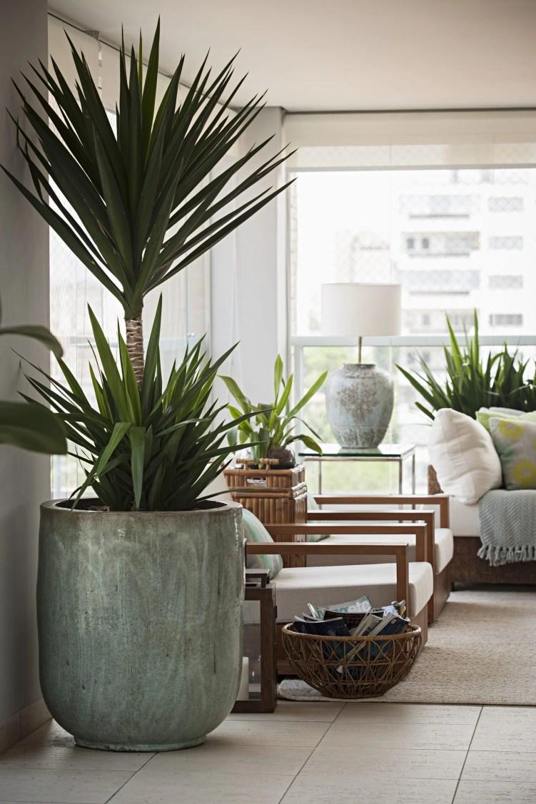 Apartamento com vaso grande de planta.