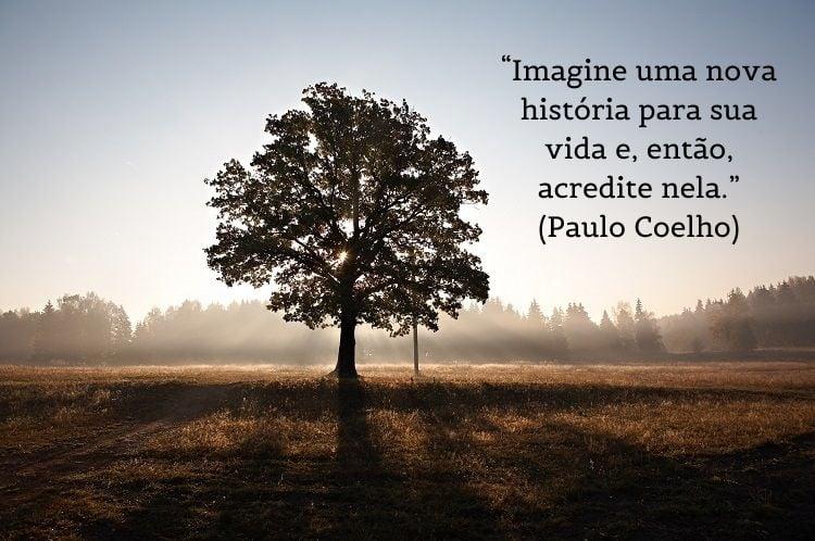citação de Paulo Coelho com foto de árvore ao fundo