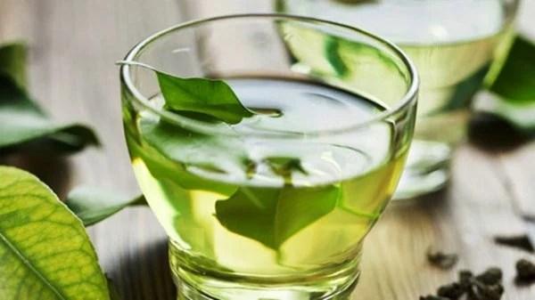 Caneca com chá de folhas de abacate imersas