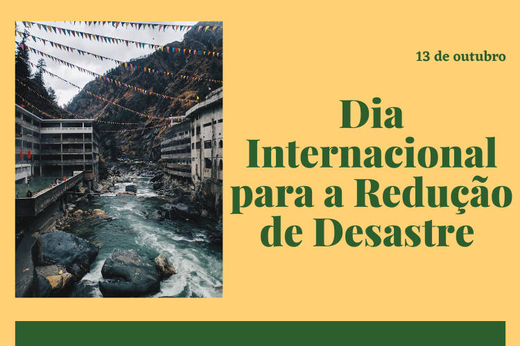 Dia Internacional para a Redução de Desastres