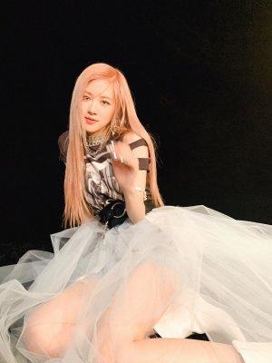 Denim Tulle Skirt   Rose – BlackPink