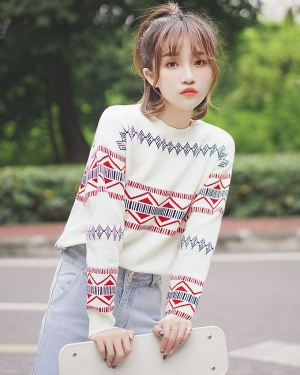 Sweater with Triangle Pattern (1)