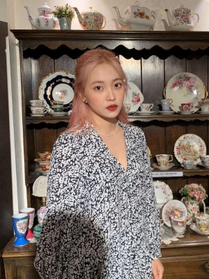 Black And White Print V-Neck Dress | Yeri – Red Velvet