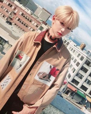 Earthy Multi Patched Coat | Felix – Stray Kids