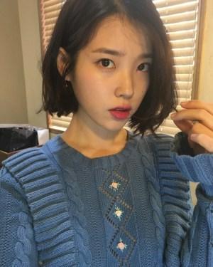 Blue Ruffled Floral Knit Sweater   IU
